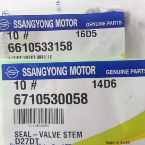 Exhaust & Intake Valve Stem Seal 10 pcs Ssangyong MUSSO SPORTS KORNADO